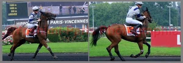 Balade de Blary Prix de Basly 2014 Hippodrome de Paris Vincennes - 06-09-2014
