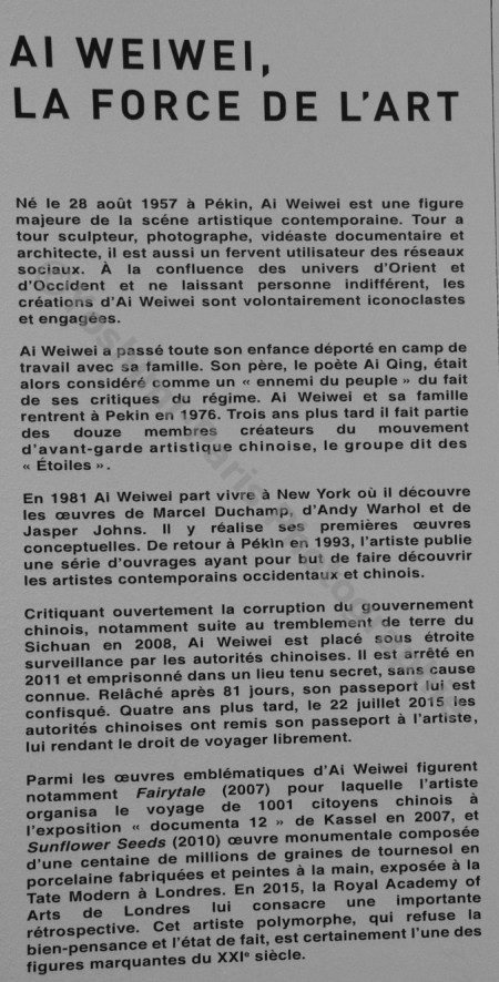 Ai WeiWei - exposition 2016 Au Bon Marché rue de Sèvres